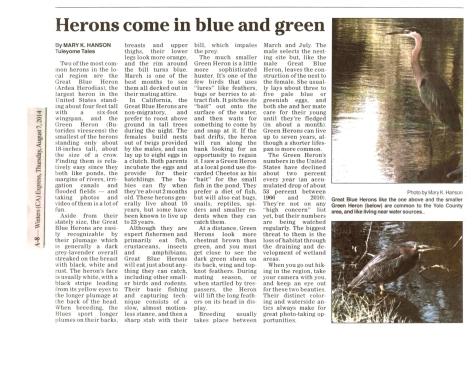 Heron Article 080714
