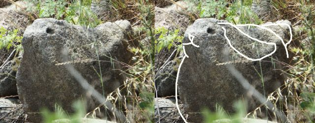 This rock looked like a rabbit to me.