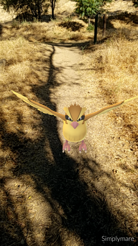 One of the Pokémon Go creatures I found on my walk.